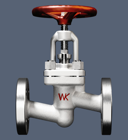 Screw down non-return valves